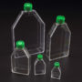 Tissue Culture Treated Flasks_Web
